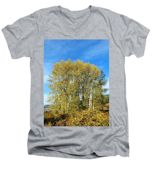 Rosehips And Cottonwoods Men's V-Neck T-Shirt