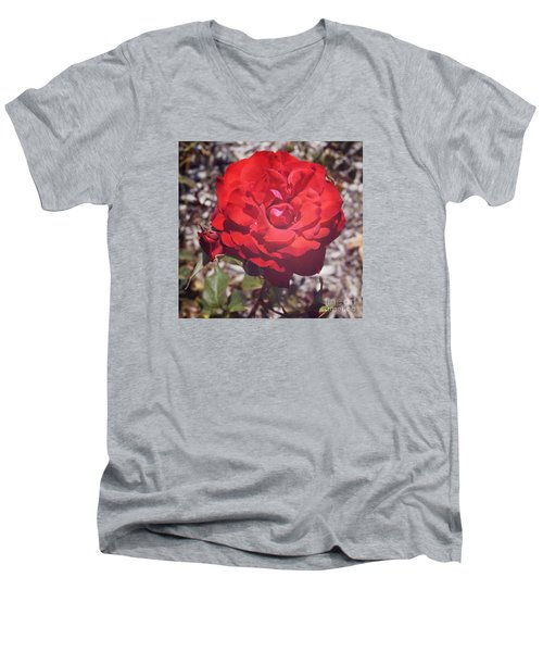 Men's V-Neck T-Shirt featuring the photograph Roses Are Red by Cassandra Buckley
