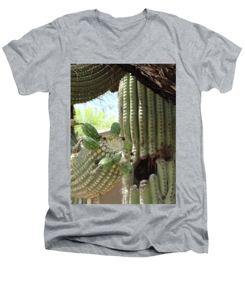 This Cactus Is Rotten To The Core Men's V-Neck T-Shirt