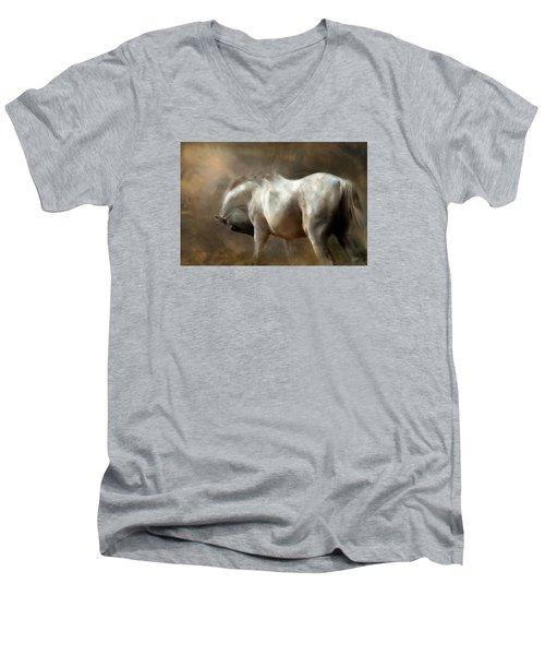 Roundness Men's V-Neck T-Shirt