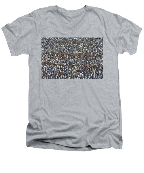 Men's V-Neck T-Shirt featuring the photograph Royal Layers by Tony Beck