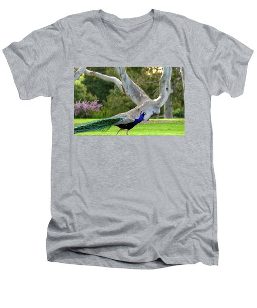 Royalty Men's V-Neck T-Shirt