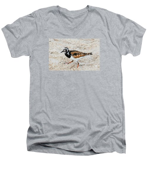 Ruddy Turnstone Men's V-Neck T-Shirt by Kenneth Albin