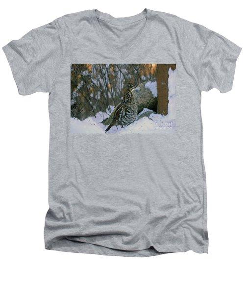 Ruffed Grouse Men's V-Neck T-Shirt