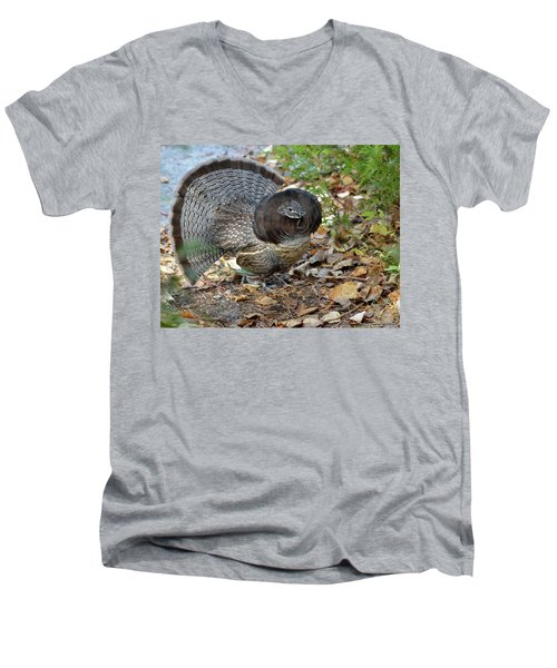 Ruffed Up- Ruffed Grouse Displaying Men's V-Neck T-Shirt by David Porteus