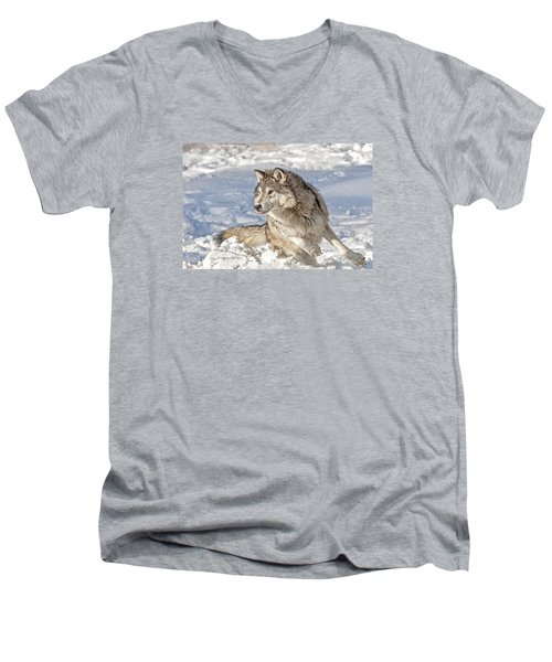 Running Wolf Men's V-Neck T-Shirt