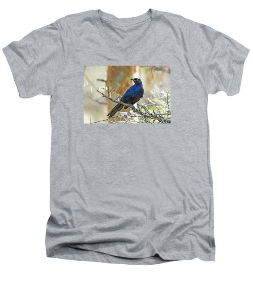 Men's V-Neck T-Shirt featuring the photograph Ruppels Glossy Starling by Pravine Chester