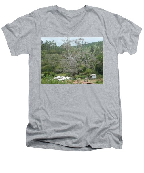 Rural Scenery Men's V-Neck T-Shirt