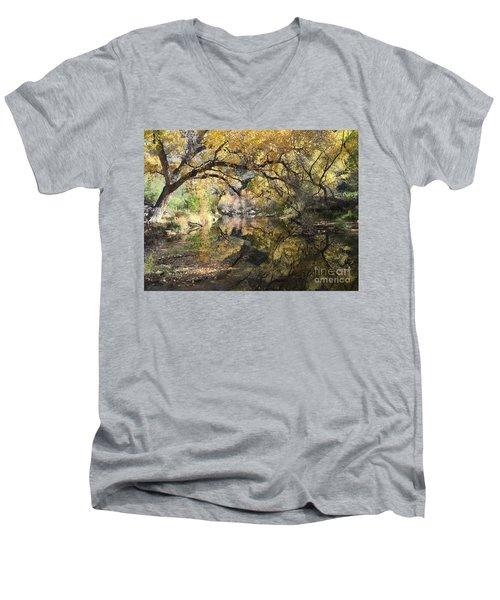 Sabino Canyon In Fall Men's V-Neck T-Shirt