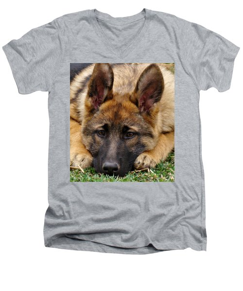 Sable German Shepherd Puppy Men's V-Neck T-Shirt