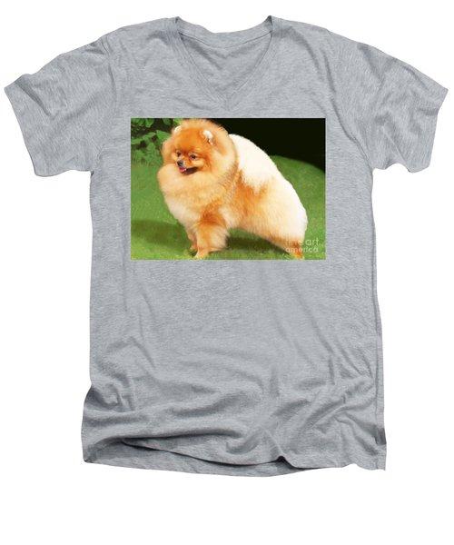 Sable Pomeranian Men's V-Neck T-Shirt