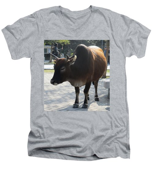 Men's V-Neck T-Shirt featuring the photograph Sacred Cow 2 by Randall Weidner