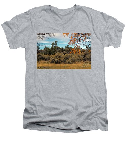Sagebrush And Lava Men's V-Neck T-Shirt by Cindy Murphy - NightVisions