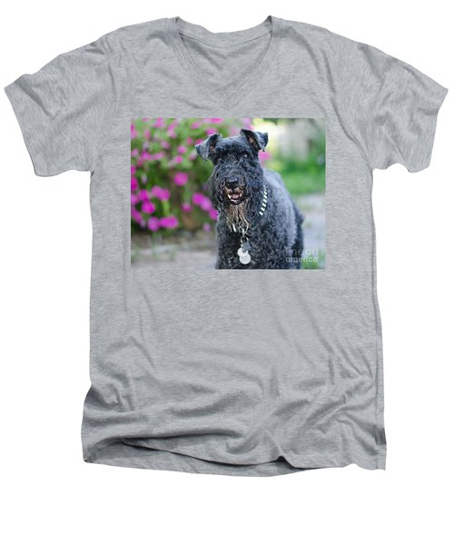 Sailor Men's V-Neck T-Shirt