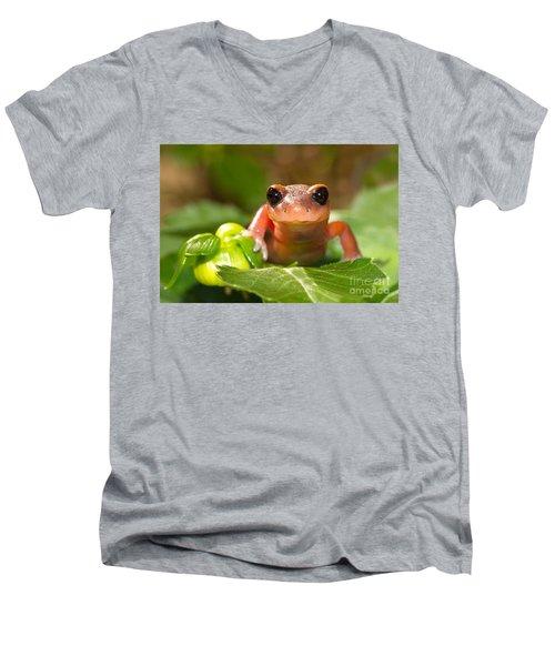 Salamander Smile Men's V-Neck T-Shirt