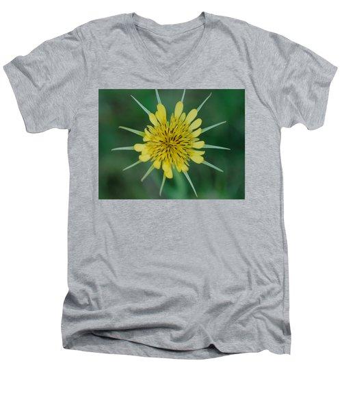 Salsify  Men's V-Neck T-Shirt