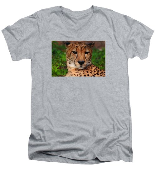 Men's V-Neck T-Shirt featuring the photograph Samson by Michiale Schneider