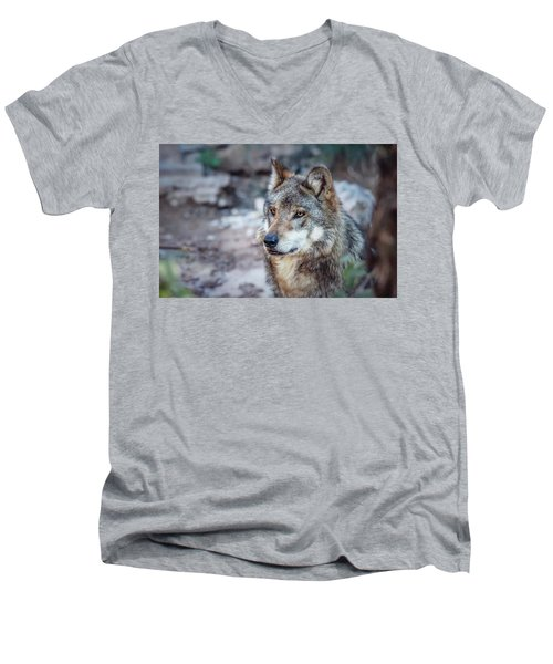 Sancho Searching The Area Men's V-Neck T-Shirt by Elaine Malott
