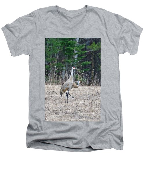 Men's V-Neck T-Shirt featuring the photograph Sandhill Cranes 1166 by Michael Peychich