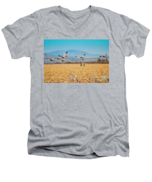 Sandhill Cranes In Flight Men's V-Neck T-Shirt