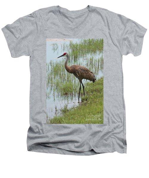 Sandhill In The Marsh Men's V-Neck T-Shirt