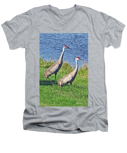 Sandhill Pair Men's V-Neck T-Shirt