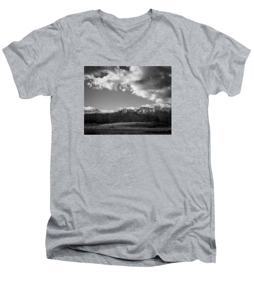 Sandwich Marsh Men's V-Neck T-Shirt