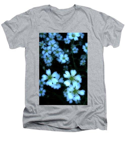 Sandywinks Men's V-Neck T-Shirt