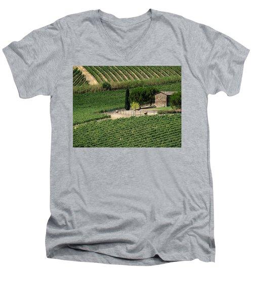 Sangiovese Vineyard Men's V-Neck T-Shirt