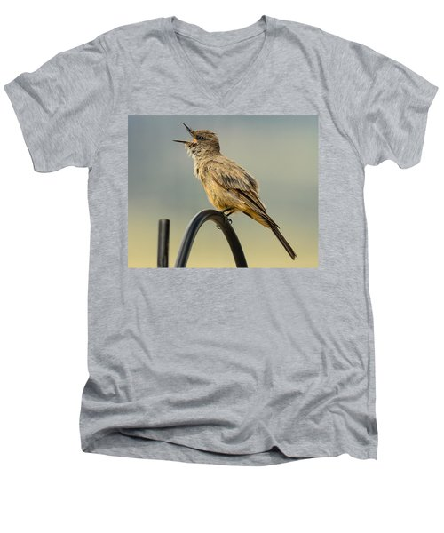 Say's Phoebe Singing Men's V-Neck T-Shirt