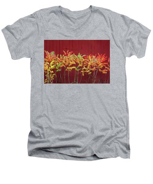 Scandinavia Sumac Men's V-Neck T-Shirt