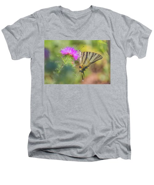 Scarce Swallowtail - Iphiclides Podalirius Men's V-Neck T-Shirt