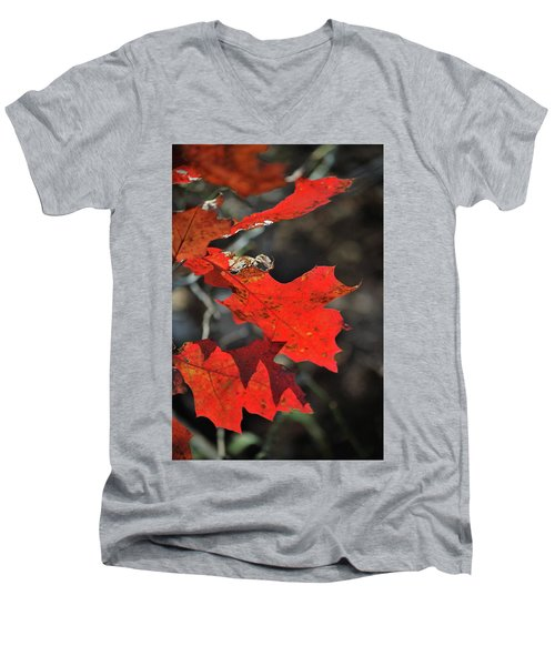 Scarlet Autumn Men's V-Neck T-Shirt