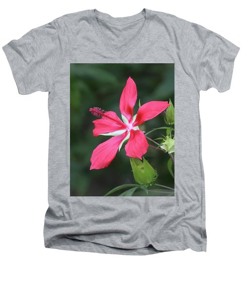 Scarlet Hibiscus #4 Men's V-Neck T-Shirt