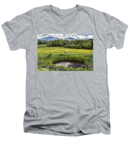 Scenic Pasture Men's V-Neck T-Shirt