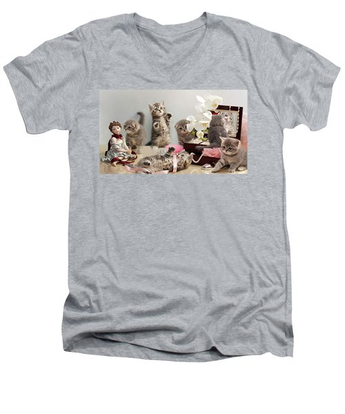 Scottish Fold Cats Men's V-Neck T-Shirt
