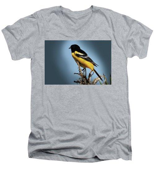 Scott's Oriole In Desert Men's V-Neck T-Shirt