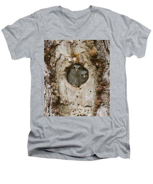 Screech Owl Babies Peeking Out Men's V-Neck T-Shirt