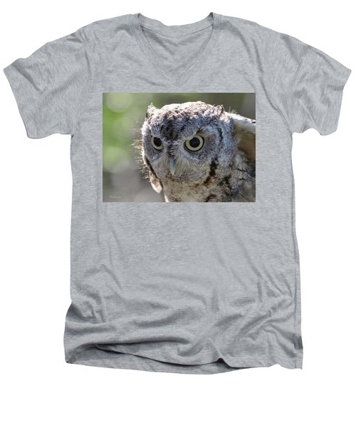 Screechowl Focused On Prey Men's V-Neck T-Shirt