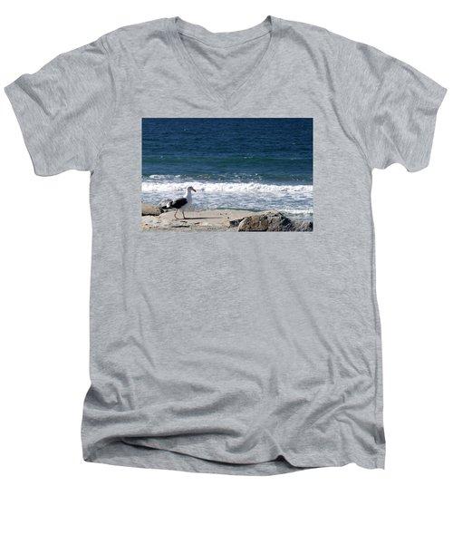 Seagull  Men's V-Neck T-Shirt by Christopher Woods