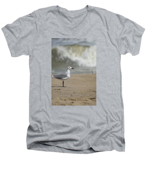Men's V-Neck T-Shirt featuring the photograph Sea Gull by Heidi Poulin