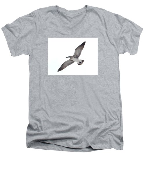 Sea Gull Men's V-Neck T-Shirt