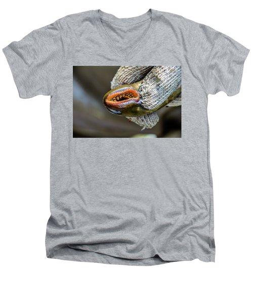 Sea Lamprey Men's V-Neck T-Shirt