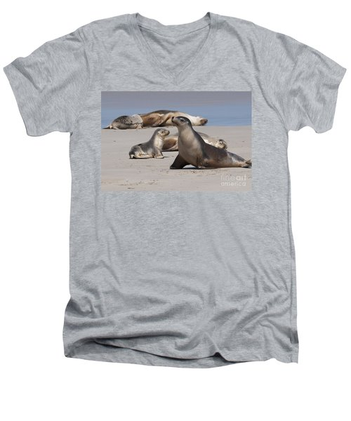 Men's V-Neck T-Shirt featuring the photograph Sea Lions by Werner Padarin