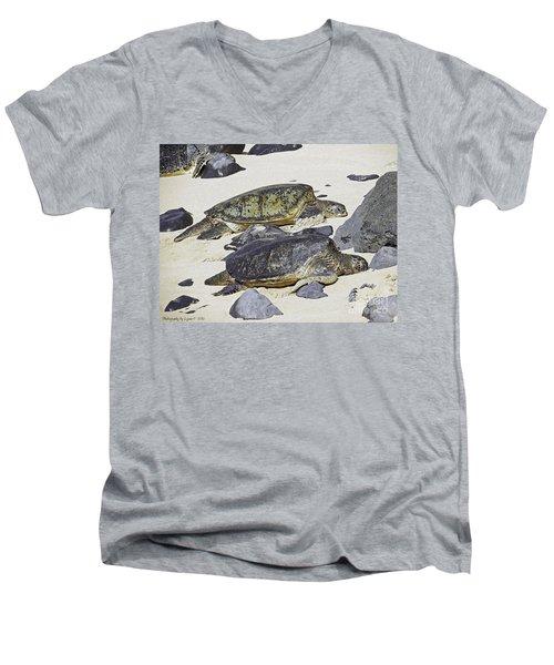 Sea Turtles Men's V-Neck T-Shirt