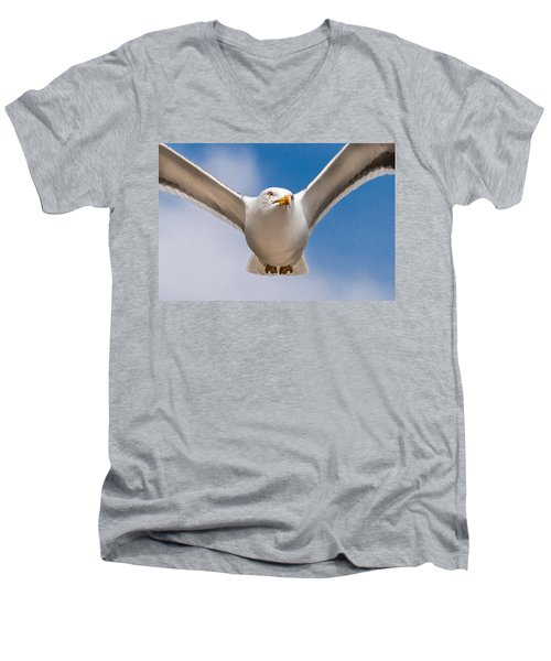 Seabird Closeup Men's V-Neck T-Shirt