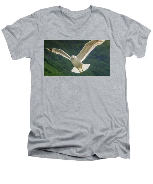 Seagull At The Fjord Men's V-Neck T-Shirt by KG Thienemann