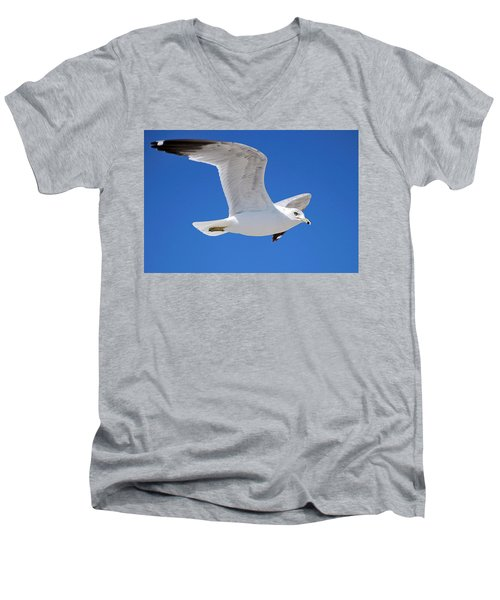 Men's V-Neck T-Shirt featuring the photograph Seagull by Ludwig Keck