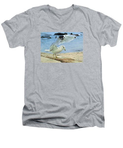 Seagull On The Beach Men's V-Neck T-Shirt by Nina Bradica