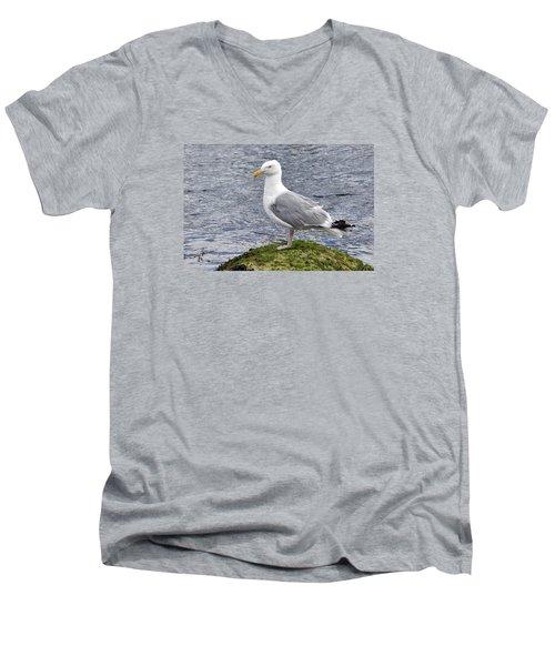 Men's V-Neck T-Shirt featuring the photograph Seagull Posing by Glenn Gordon